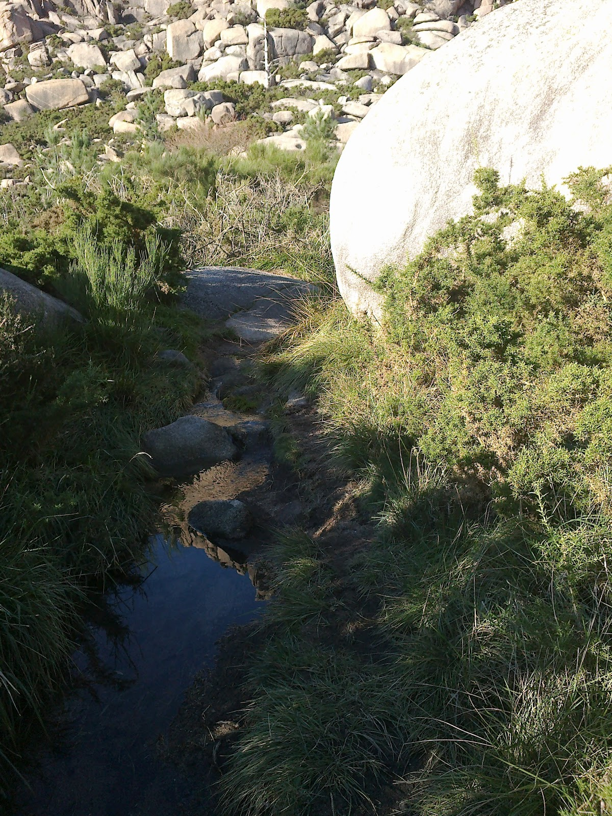 Sendero de ascenso al Monte Pindo