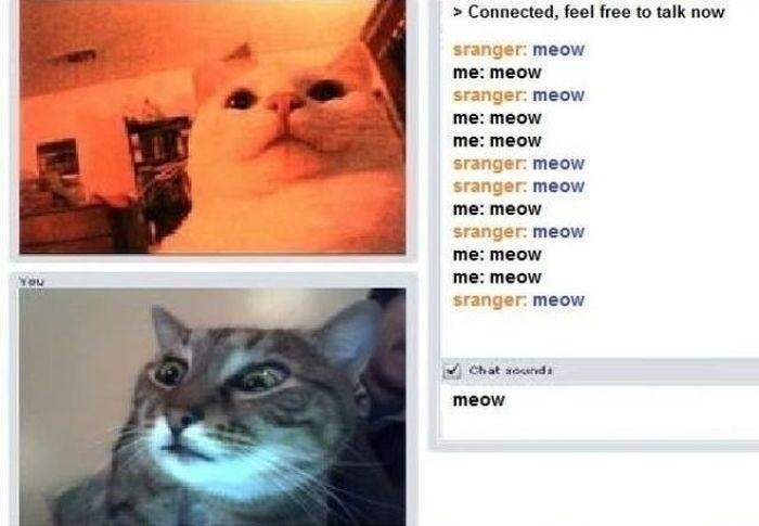 date chat roulette