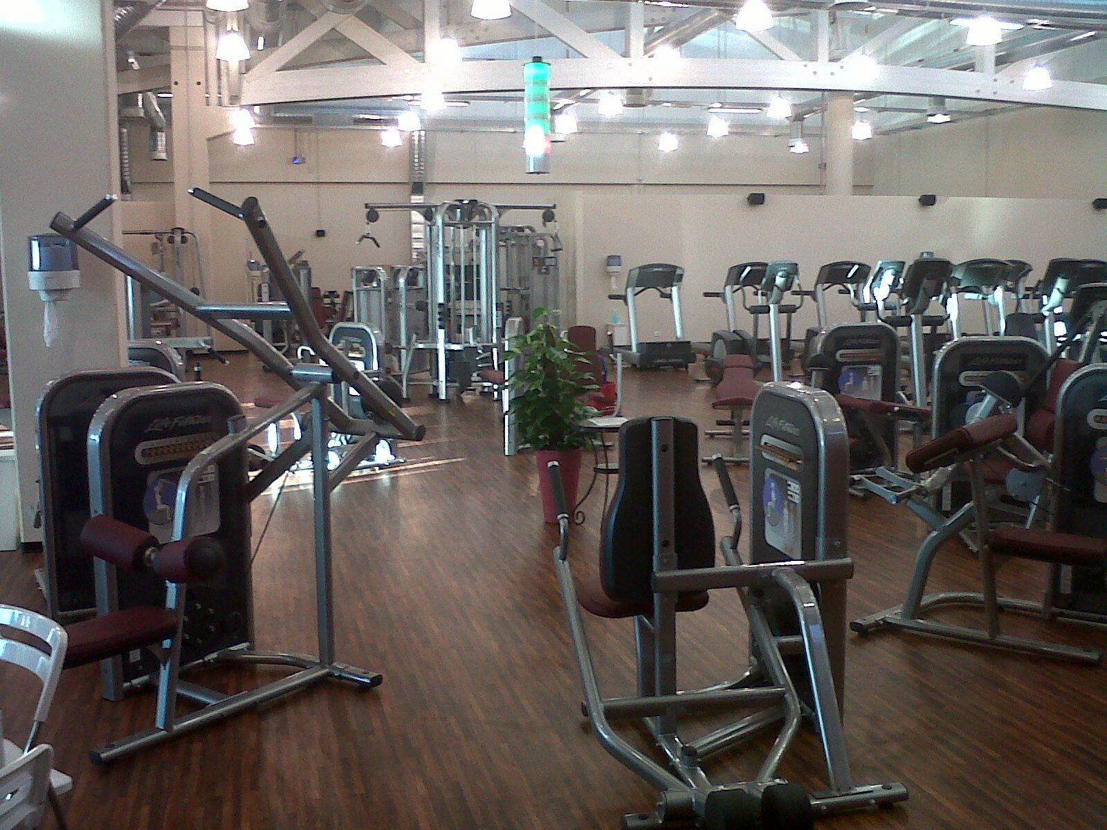 Circuito Gimnasio : El circuito cardiovascular fit and fab by lady fitness