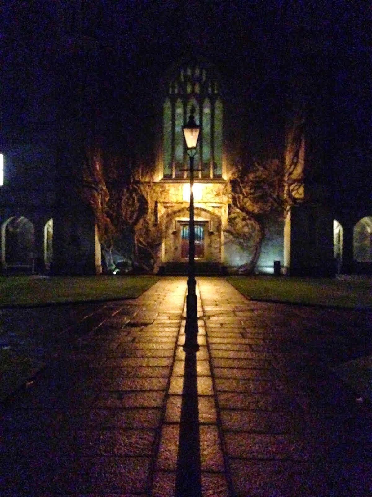 The Quad NUIG - Waiting for Narnia
