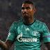 Pronostic Schalke 04 - Hoffenheim : Bundesliga