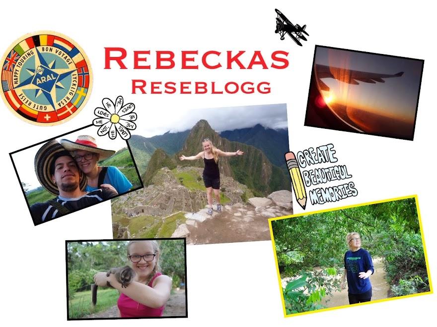 Rebecka Eliasson i världen