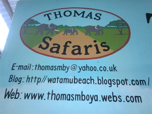 Thomas tours safaris with thomas mboya istruzioni per - Il sole alla finestra thomas ...
