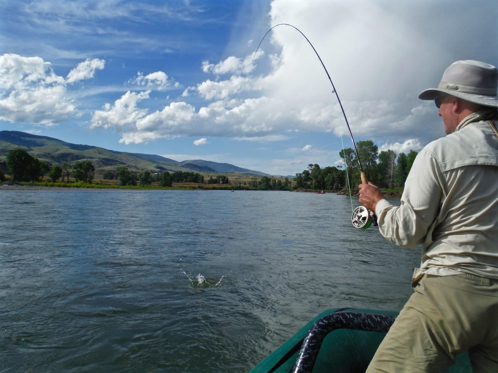 Erik s fly fishing blog yellowstone river salmon fly hatch for Yellowstone fly fishing