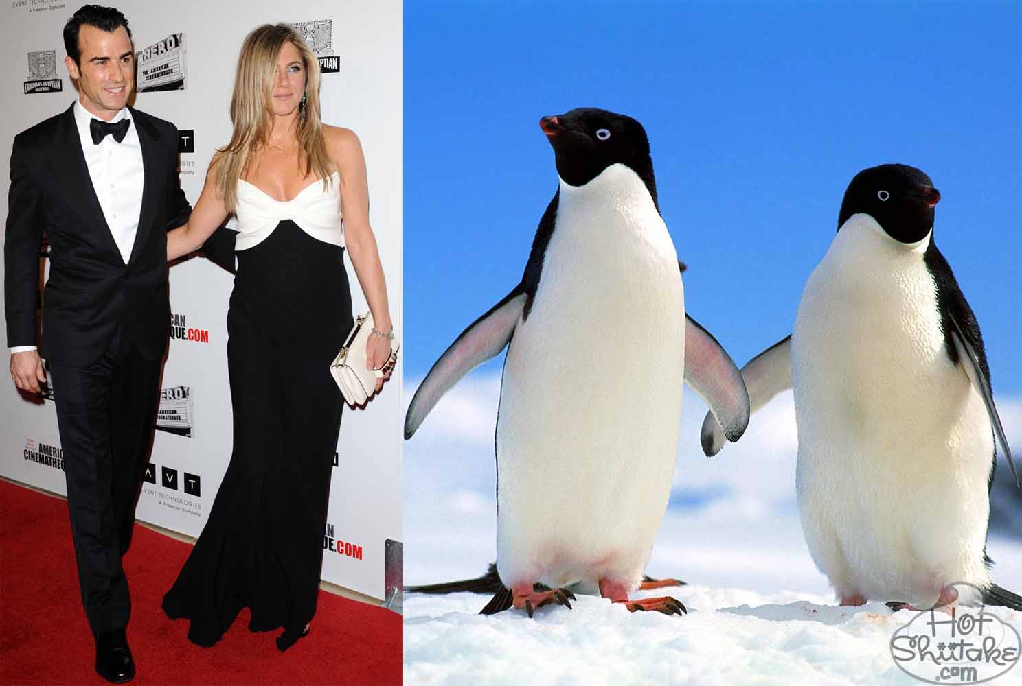 http://4.bp.blogspot.com/-TKUsJN3w1Ac/UKhRqMh4HXI/AAAAAAAABYI/gV6KHYJrEUU/s1600/justin-theroux-jennifer-aniston-penguin-couple-american-cinematheque-awards-2012.jpg