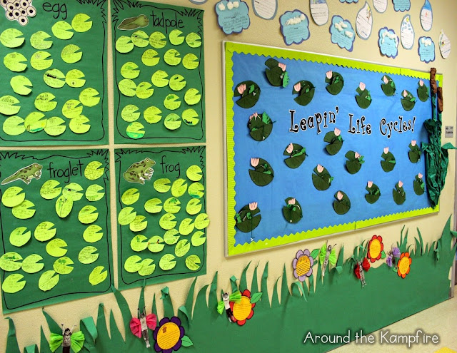 Writing about a frog's life cycle