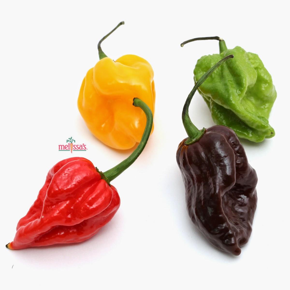 Melissa's Produce Blog: Bhut Jolokia vs. Scorpion Peppers | Super Hot ...