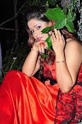 Shilpa Chakravarthy at Appudala Ippudila audio-thumbnail-5