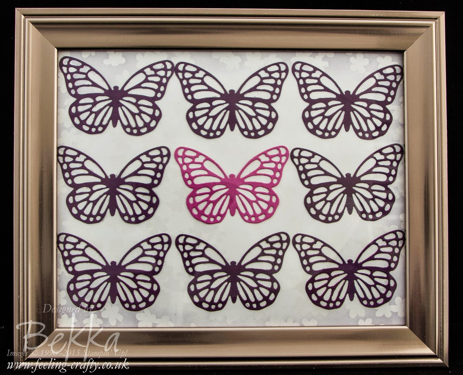 Beautiful Butterfly Picture Frame - find out about it here