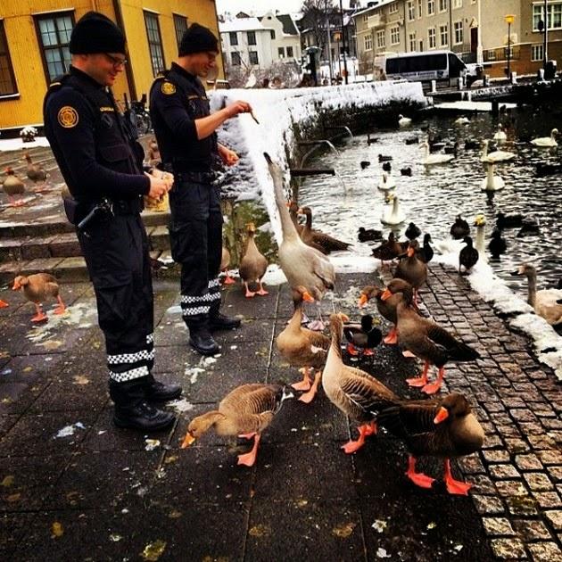 Icelandic-police-1