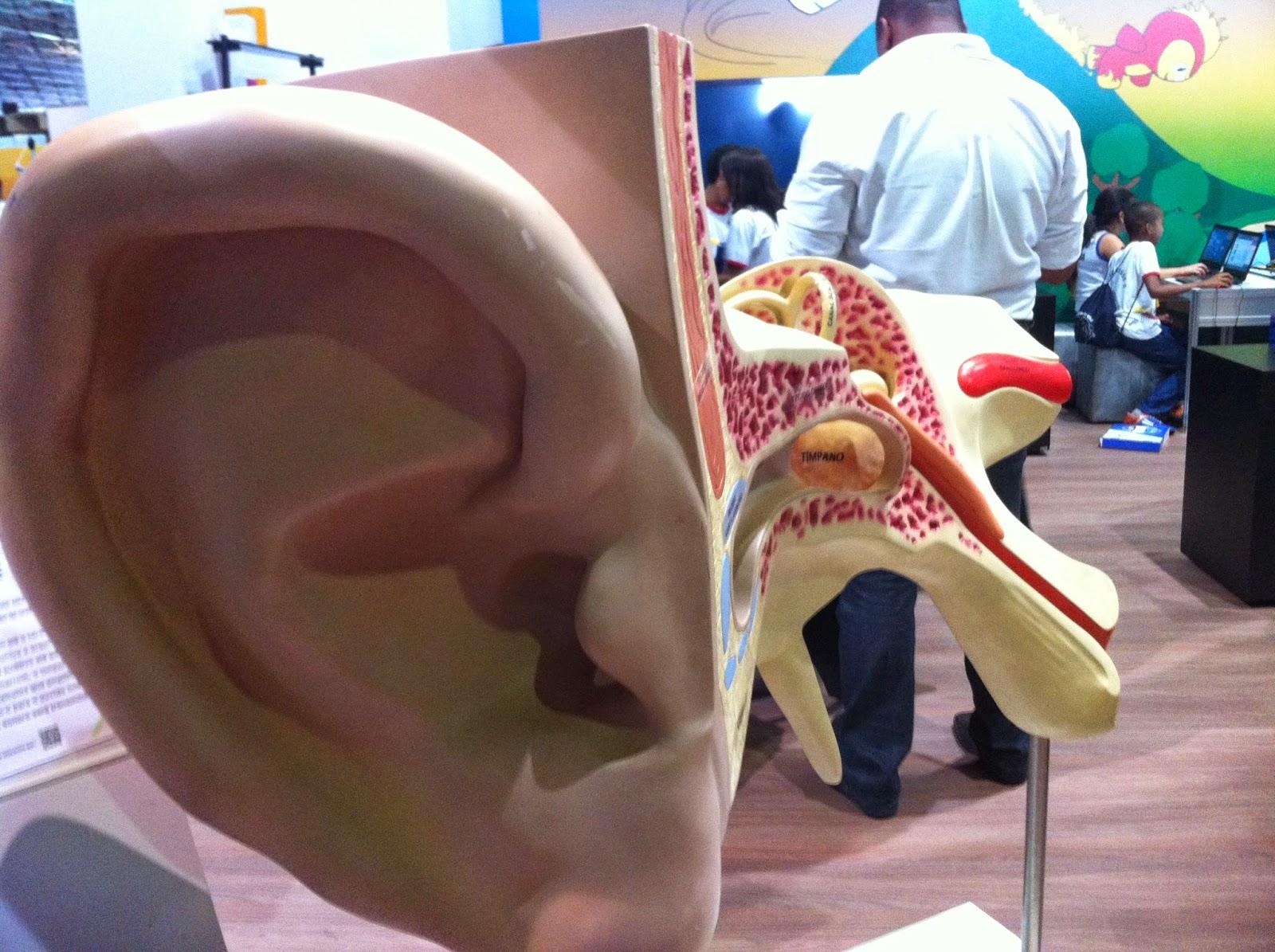 ouvido gigante