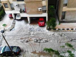 الإسكندرية في فصل الشتاء: يناير 2012