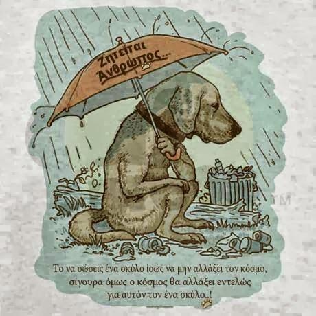 Τα σκυλιά δεν μπορούν χωρίς τον άνθρωπο