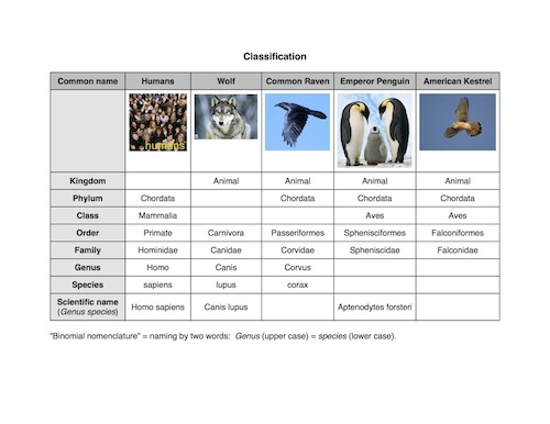 Worksheets Biological Classification Worksheet fcim sc 6 l 15 1 linnaeus classification 7 2 theory of evolution
