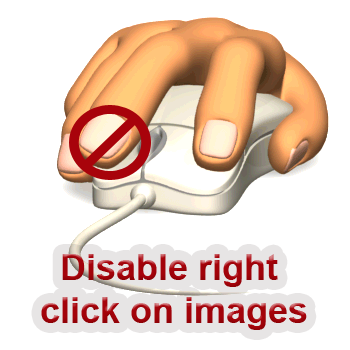 Disable Right Click Context Menu On Your Blog Images