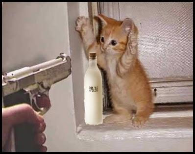 Gatito con las patitas arriba amenazado con arma por robar leche.
