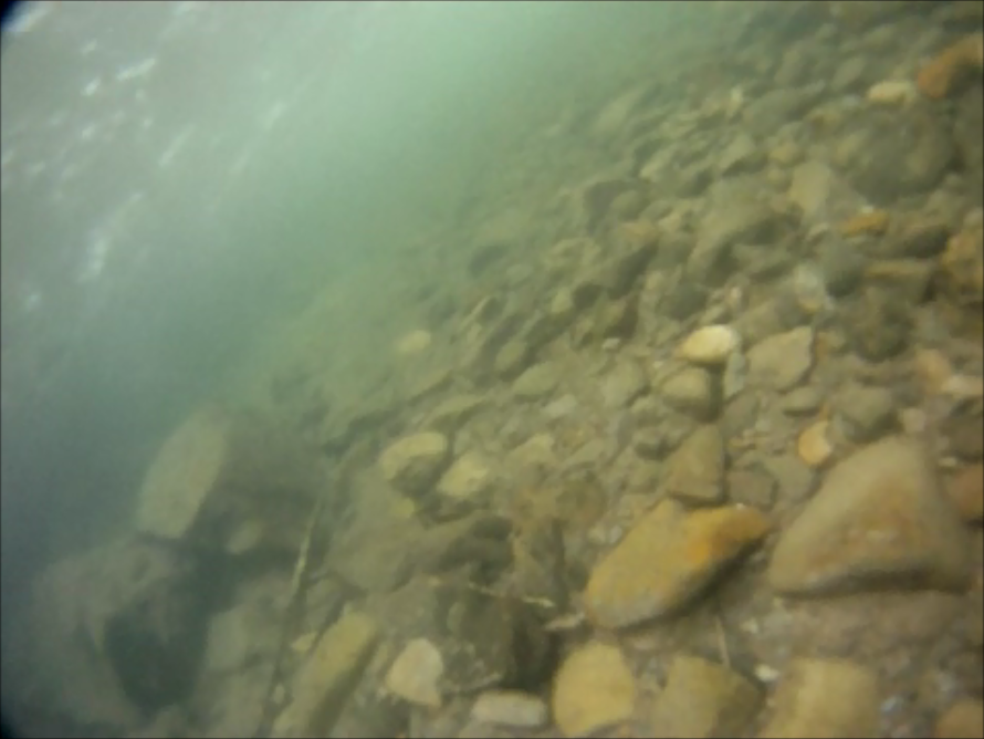 Gords swim log spontaneous cold water swim for Can fish see water