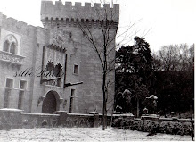 KAMENICKI PARK, Castle Keep  by Sydney Pollack