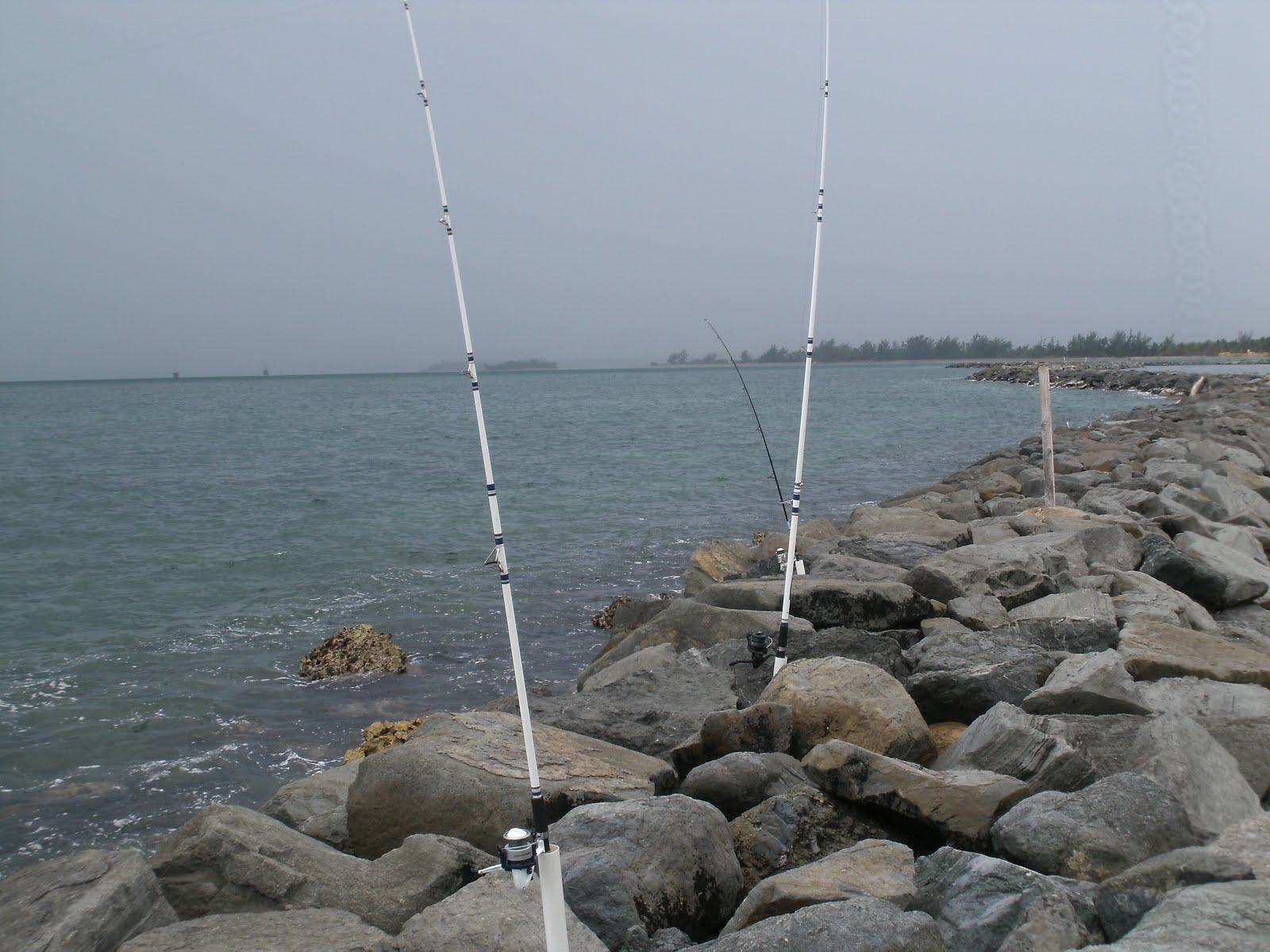 La pesca en la esfera de Saratov del lugar