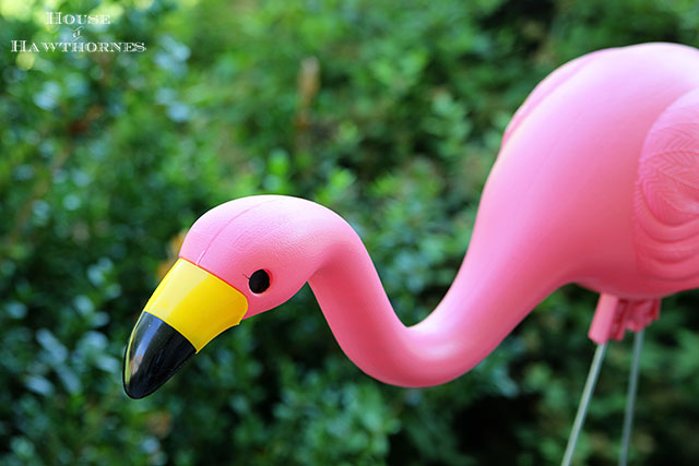 Pink flamingos and thoughts on summer's end  via houseofhawthornes.com