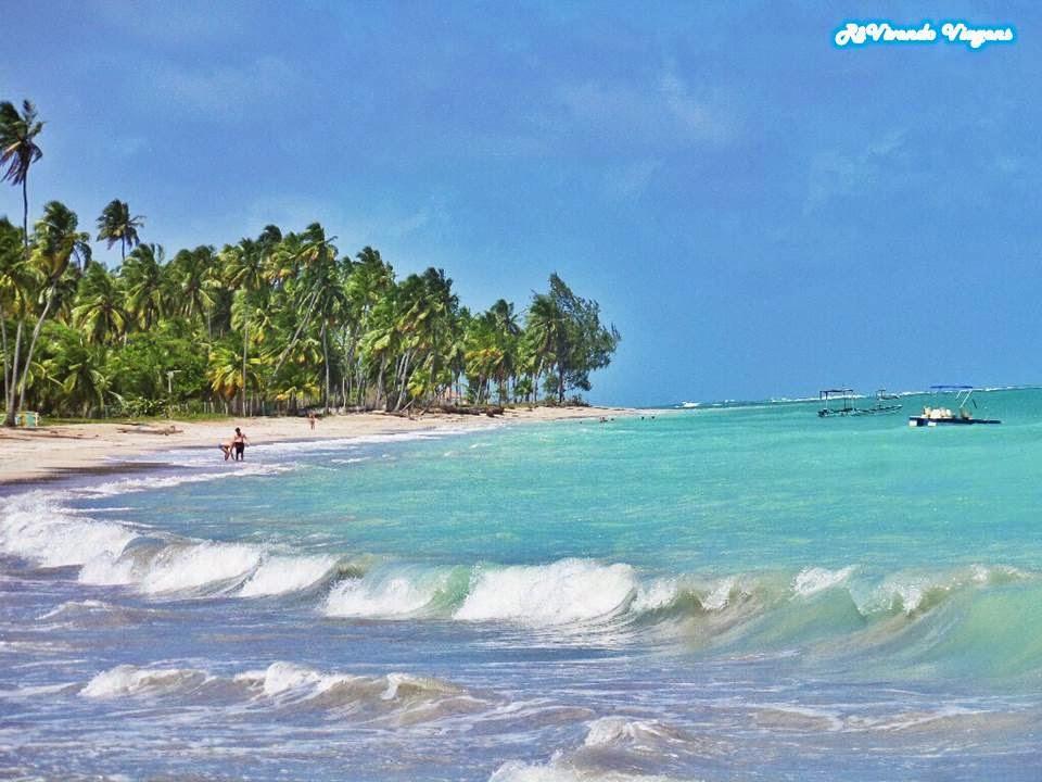Litoral norte de Alagoas