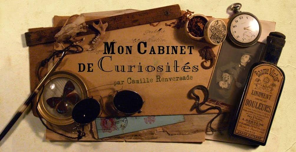 """""""Mon Cabinet de Curiosités"""" par Camille Renversade"""