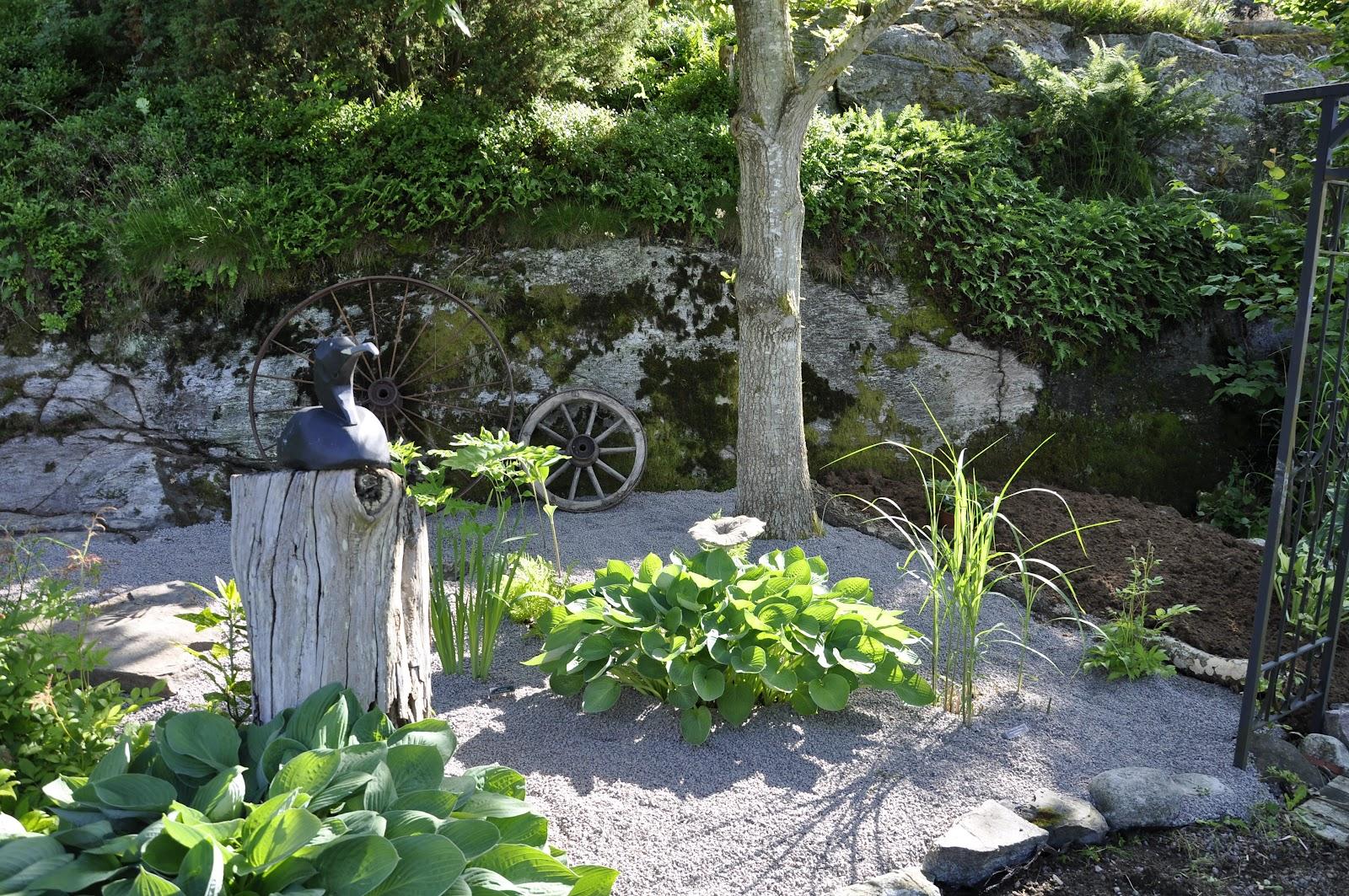 Trädgård Grus : Alen trädgård vet att jag är knäpp