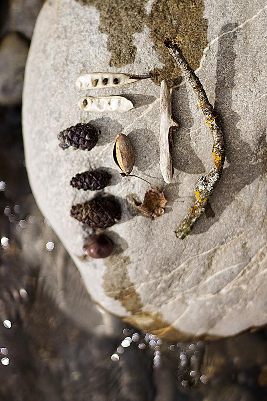 Cazadora de inspiración © Anna Tykhonova / Boltaña / Huesca / Aragon / Spain