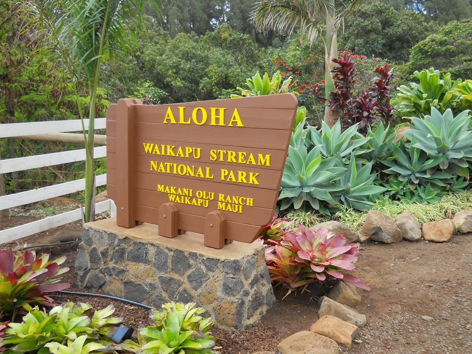 Maui Dressage Academy