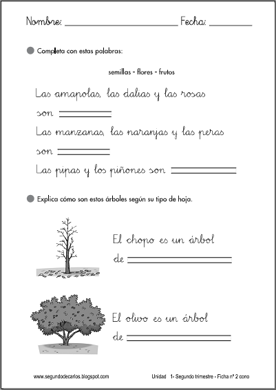 http://www.primerodecarlos.com/SEGUNDO_PRIMARIA/enero/tema1/fichas/cono/cono2.pdf