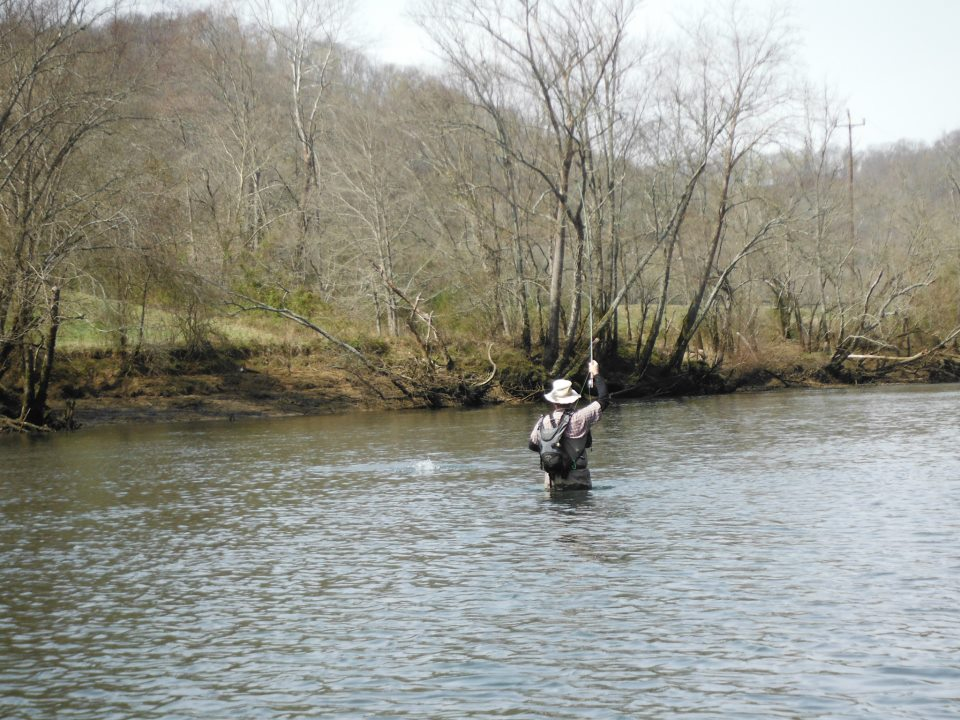 Tennessee fly fishing goodbye home waters for Tennessee trout fishing