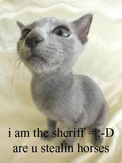 sheriff kittah