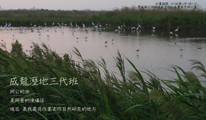 成龍溼地三代班  (成龍溼地偵探社)