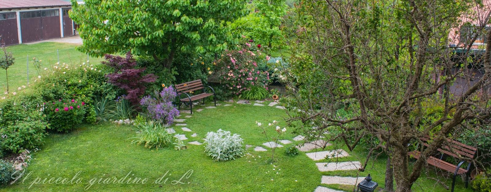 Il piccolo giardino di l una visione d 39 insieme del mio for Giardini da arredare