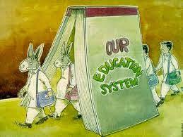 حان الأوان لمراجعة منظومة التعليم من أساسها