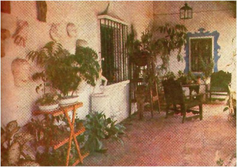 La historia de Frida Añez en Carabobo a partir de 1950: febrero 2011