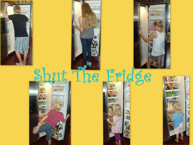 Shut The Fridge