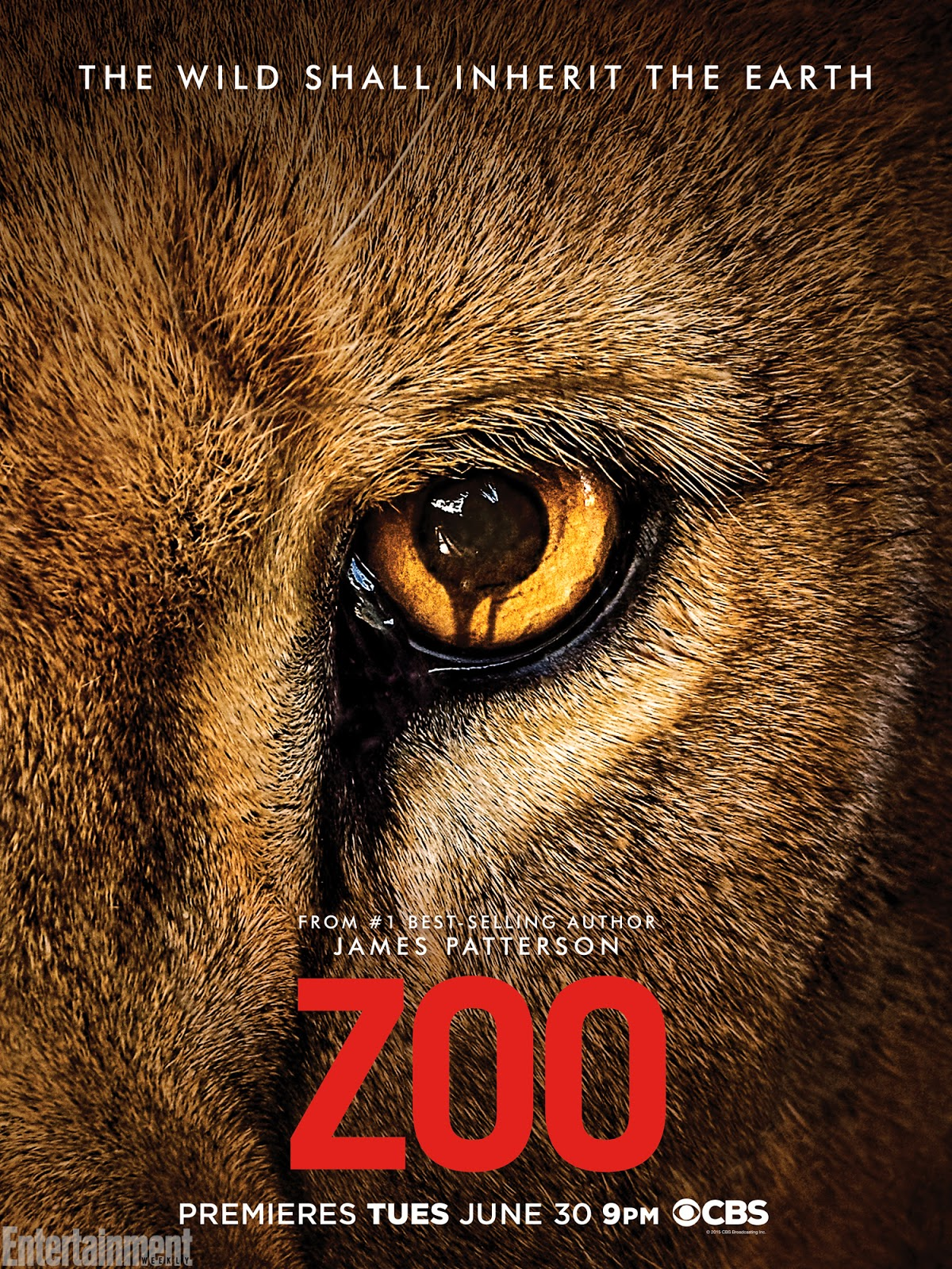 Assistir Zoo 1x08 - Episode 8 Online