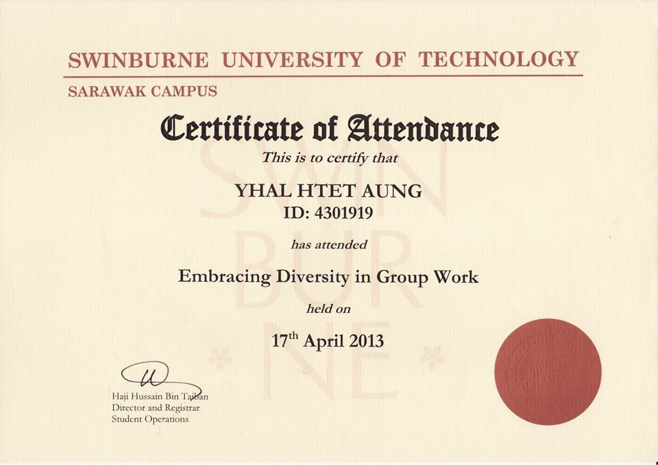 Certificate in Embracing Diversity in Group Work