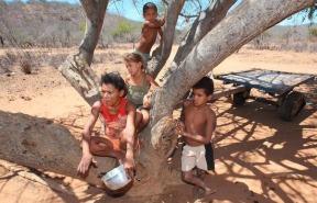 brasil-carinhoso-pobres-seca-nordeste