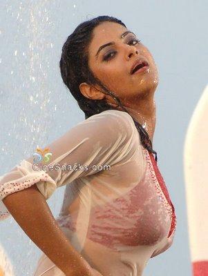 girls-tamil-actress-nila-nude-images-hot-legs