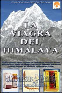 VIAGRAHIMALAYA La viagra del Himalaya (2008) Español