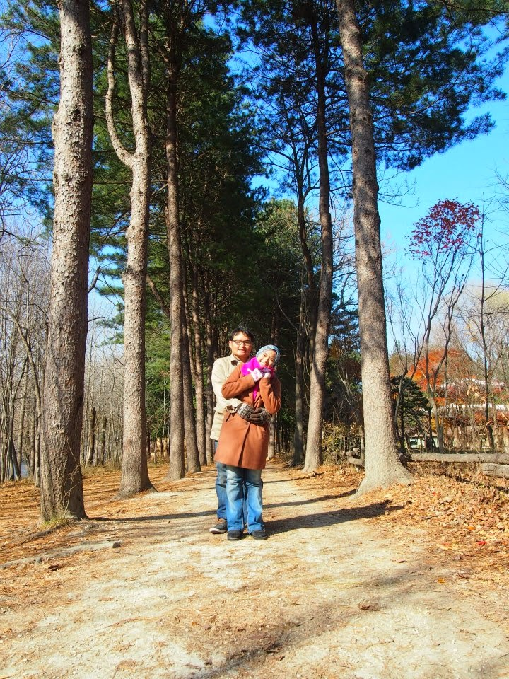 Honeymoon @ Korea