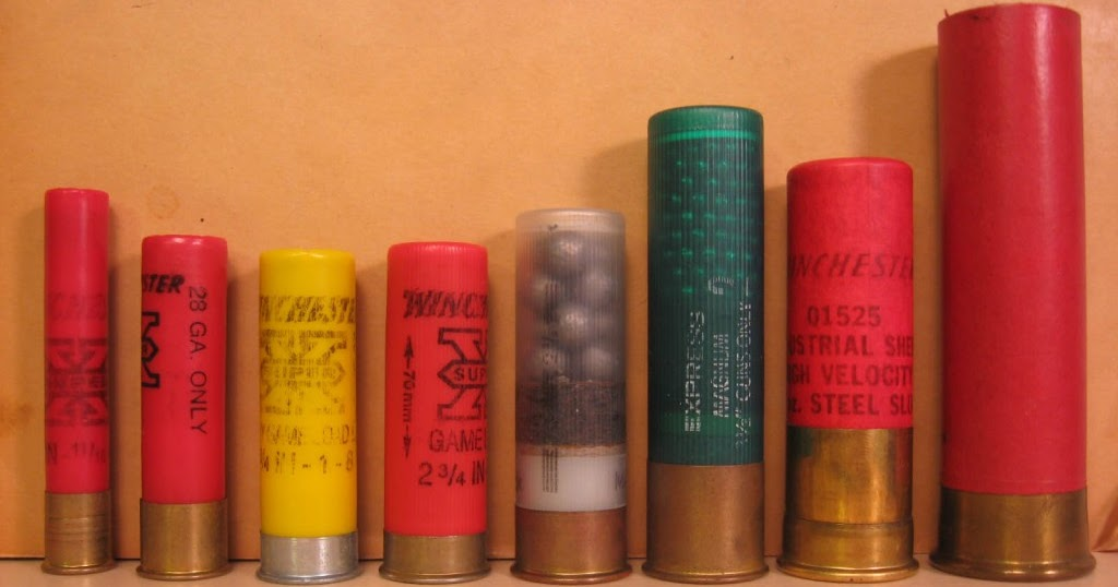 ammo and gun collector shotgun shell gauge size comparison