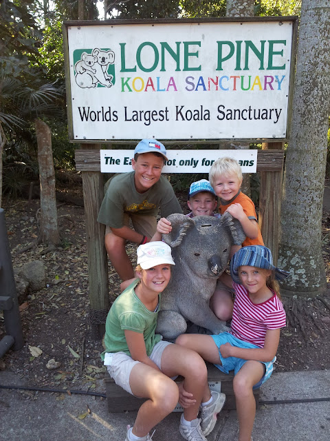 Lone Pine Koala Sanctuary- a Brisbane Institution