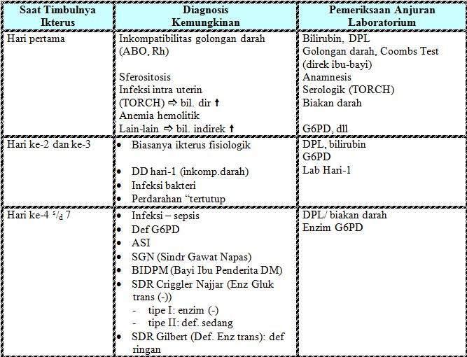 Fungsi Dan Metabolisme Bilirubin Dalam Tubuh