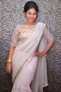 Anjali latest Glamorous pics in saree 031