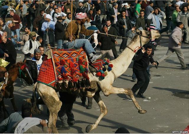صور لاحداث مصر M5