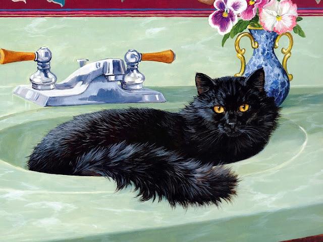 кошка сидит в раковине