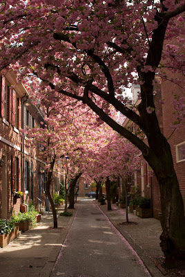 South Philly, (Philadelphia), Pennsylvania, USA